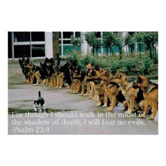 Psalm 23:4 poster