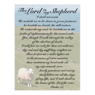 Psalm 23 Bible Verse, Irish Sheep Field Postcard