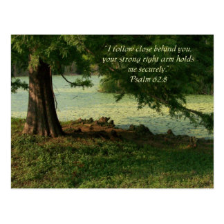 Psalm of Comfort Postcard