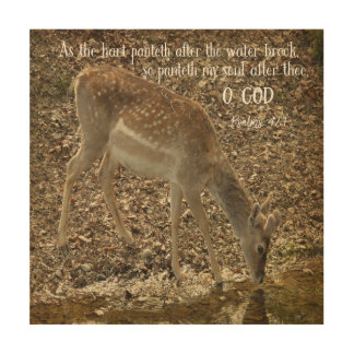 Psalms 42.1 Bible Verse Wood Canvases