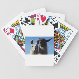 Pssst.... Poker Deck
