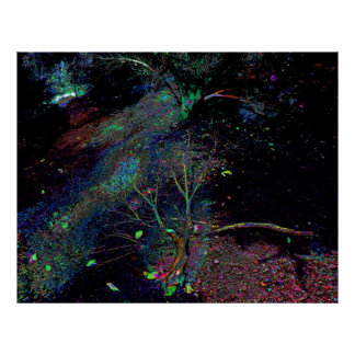 Psychedelic Forest... Print