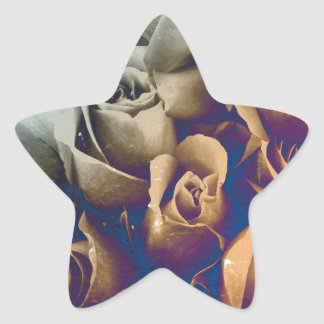 Psychedelic Grunge Roses Star Sticker