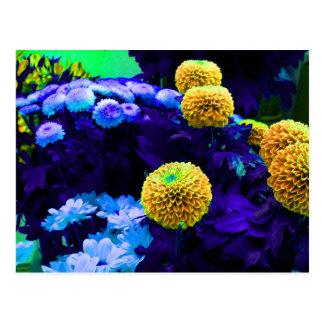 Psychedelic pop flowers postcard