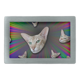 Psychedelic Tye Die Cat Belt Buckles
