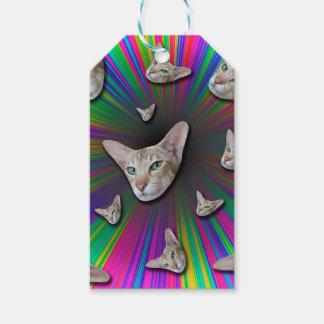 Psychedelic Tye Die Cat Gift Tags