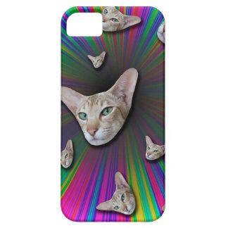 Psychedelic Tye Die Cat iPhone 5 Case