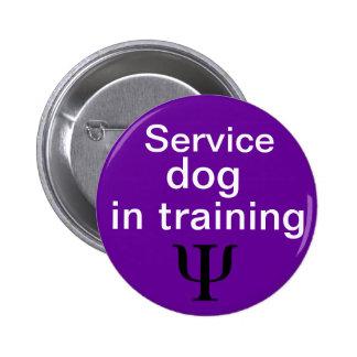 psychiatric service dog in training button