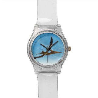 Pteranodon bird flying - 3D render Watches