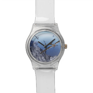 Pteranodon birds - 3D render Watches