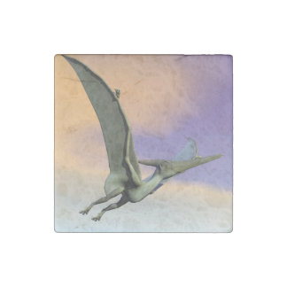 Pteranodon dinosaur flying - 3D render Stone Magnet