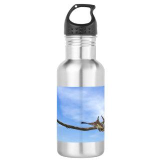 Pteranodon dinosaurs flying - 3D render 532 Ml Water Bottle
