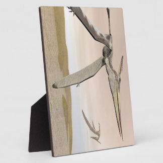 Pteranodon dinosaurs flying - 3D render Plaque