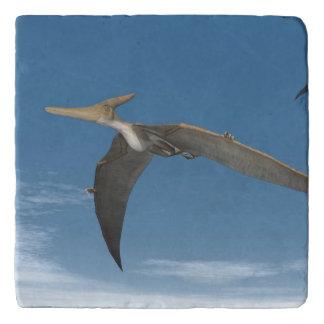 Pteranodon dinosaurs flying - 3D render Trivet