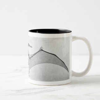 Pteranodon Skeleton Two-Tone Mug