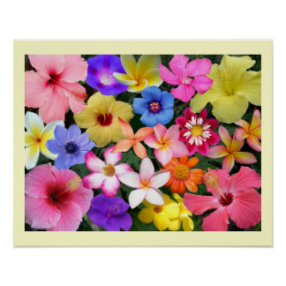 PTropical Flowers Posters