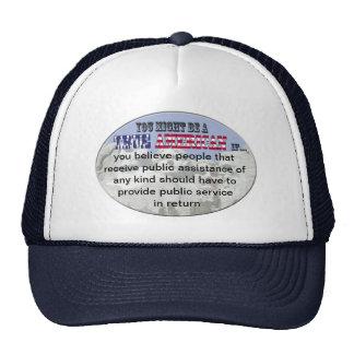 Public Assistance Mesh Hats