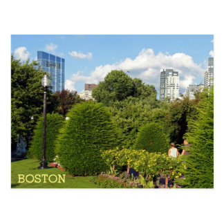 Public Garden and Skyscrapers Downtown Boston Postcard