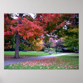 Public Garden Fall Posters