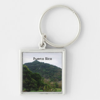 Puerto Rican Rainforest Silver-Colored Square Key Ring