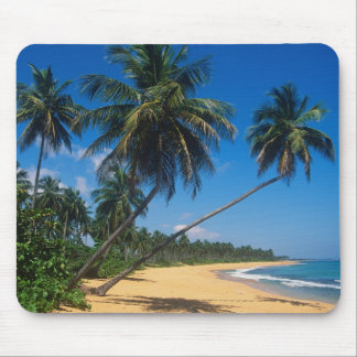 Puerto Rico, Isla Verde, palm trees. Mouse Pad