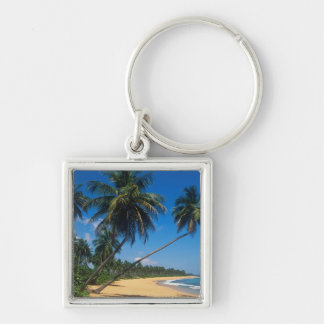Puerto Rico, Isla Verde, palm trees. Silver-Colored Square Key Ring