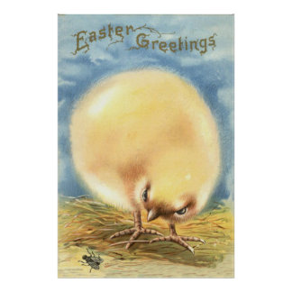 Puffball Fluffy Easter Chick Fly Poster