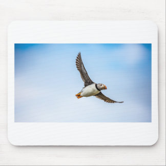 Puffin Bird Sea Flight Wildlife Fly Feather Mouse Pad
