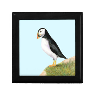 Puffin Bird Watercolour Painting Print fratercula Gift Box
