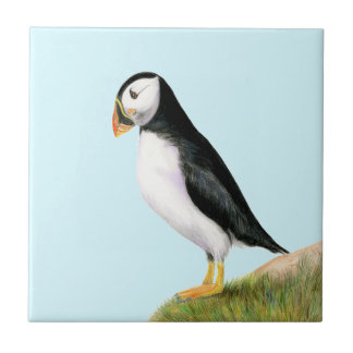 Puffin Bird Watercolour Painting Print fratercula Small Square Tile