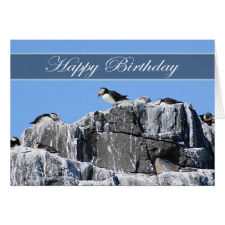 Puffin Birthday Card, wildelife Card