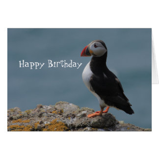 Puffin Birthday Greetings Card