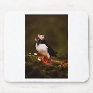 Puffin Fish Animal Bird Wildlife Atlantic Island Mouse Pad