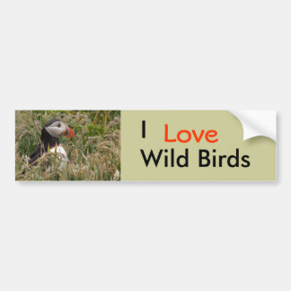 Puffin in Grass Bumper Sticker