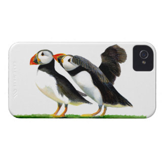 Puffins Seabirds in Watercolour Paints Artwork iPhone 4 Case