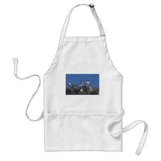 Puffins Standard Apron