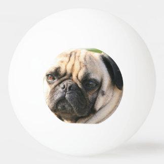 pug-18 ping pong ball