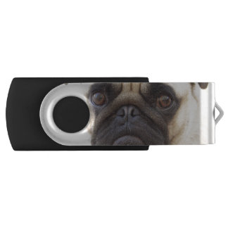 pug-7 USB flash drive