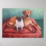 Pug and Ridgeback Poster