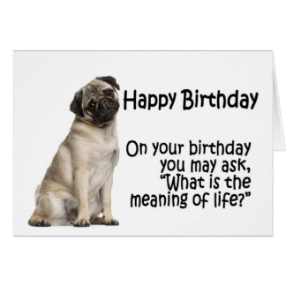 pug birthday cards  invitations  zazzle.au, Birthday card