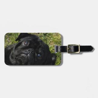 pug black luggage tag