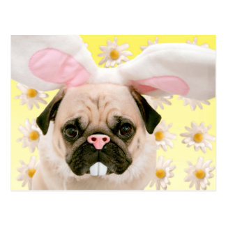 Pug Bunny Ears Postcard
