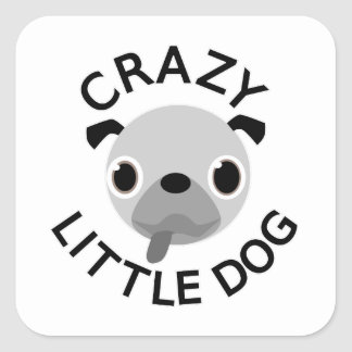 Crazy Small Fat Puppies – Funny Cute Dog and Cat Photo ...  |Crazy Little Puppies