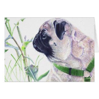 Pug Dog Art Note Cards