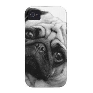 Pug Dog iPhone 4 Cover