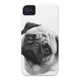Pug Dog Case-Mate iPhone 4 Cases