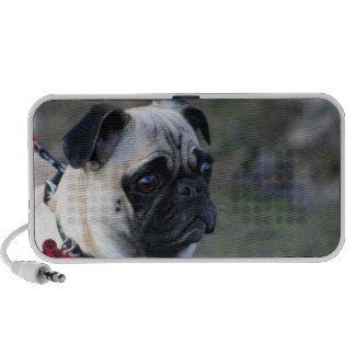 Pug dog doodle speaker