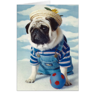 Pug Dog Little Boy Blue Card