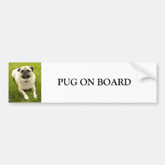 Pug dog on board custom bumper sticker