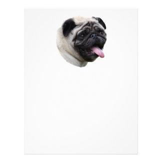 Pug dog photo portrait flyers